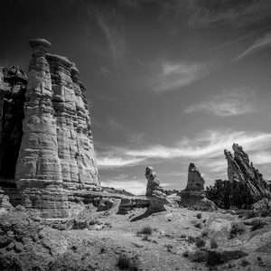 Abiquiu Collection: Beauty in the High Desert