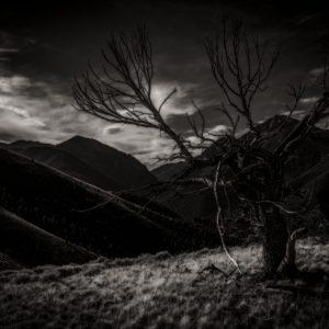 Noctem (Nightfall)