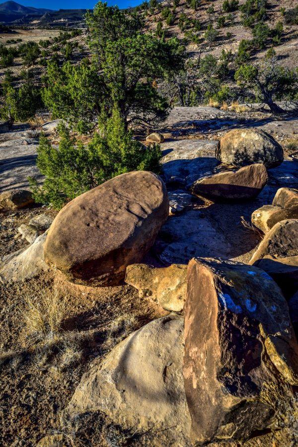 A Gathering of Rocks, Abiquiu, New Mexico