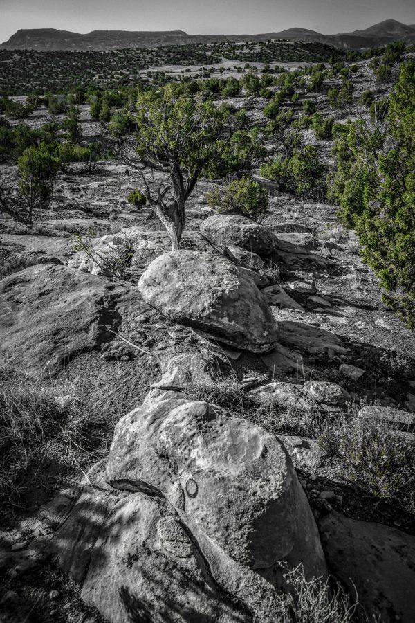 A Morning Landscape 2, Abiquiu, New Mexico