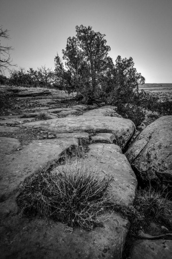 Edge of the Ridge, Abiquiu, New Mexico