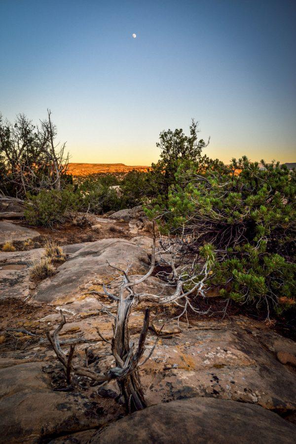 Evening Moon From Vista de Lago, Abiquiu, New Mexico
