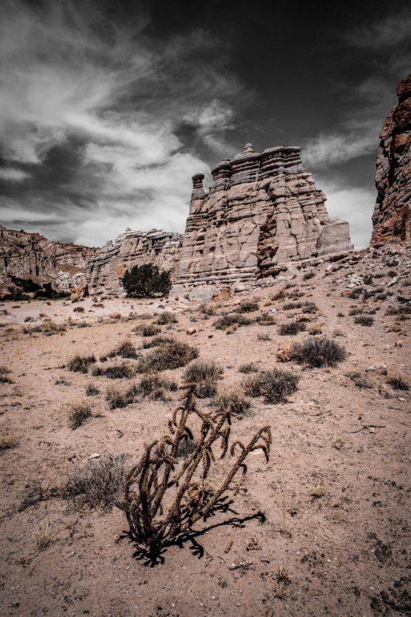 Plaza Blanca Sentries 2, Abiquiu, New Mexico