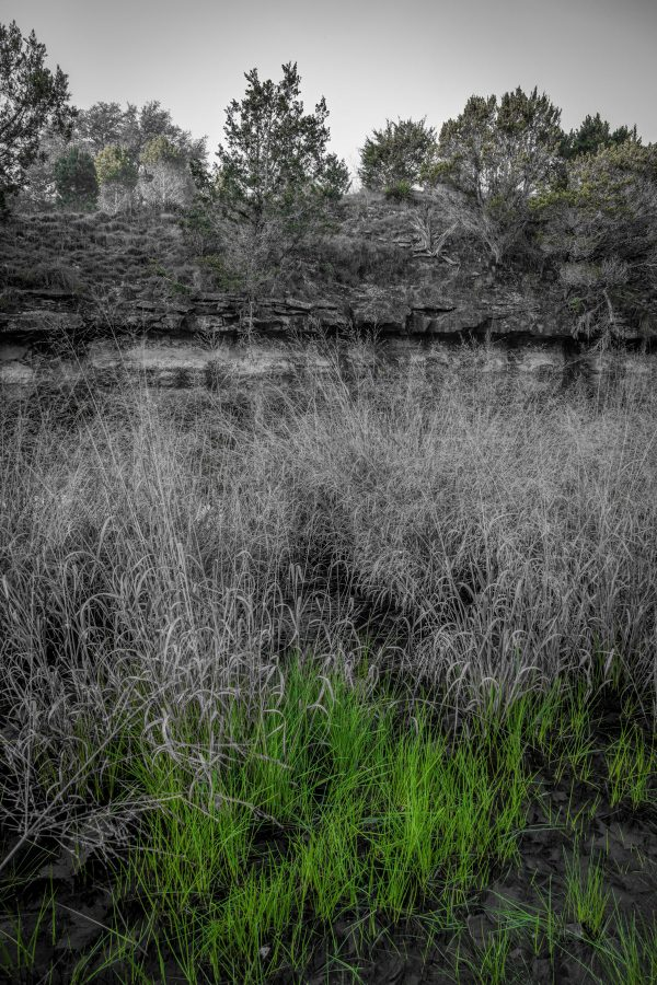 A Smith Creek Morning, Wimberley, Texas #2