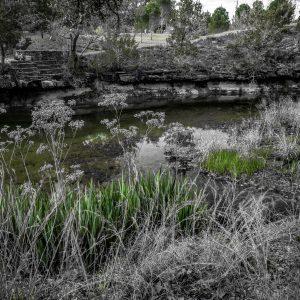 Along Smith Creek, Wimberley, Texas