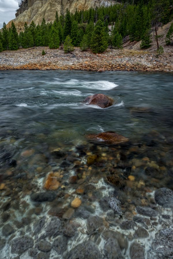 By the Yellowstone River, Yellowstone National Park, Wyoming