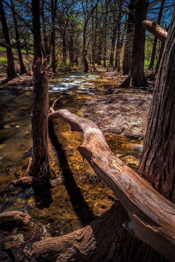 Cypress Creek After the Rains, Wimberley, Texas