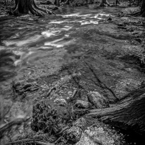 Cypress Creek Little Rapids, Wimberley, Texas #2
