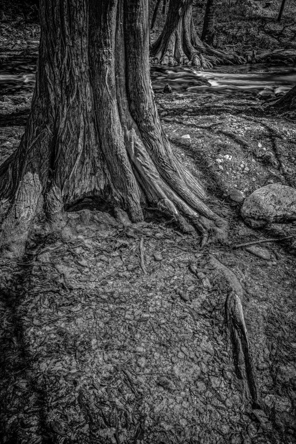 Cypress Creek Shallow Pool and Little Rapids, Wimberley, Texas #2