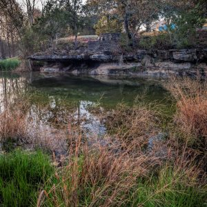 Early Morning on Smith Creek, Wimberley, Texas #11