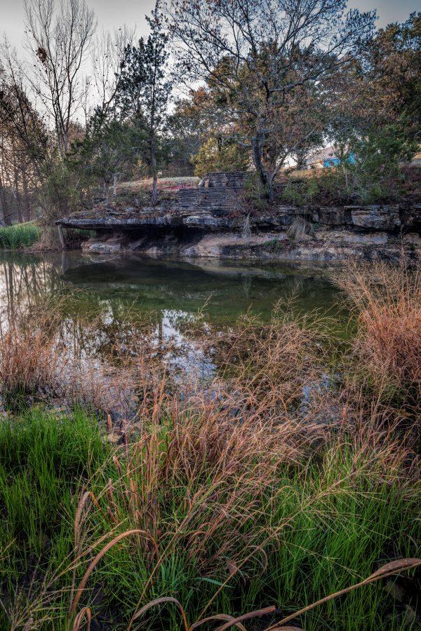 Early Morning on Smith Creek, Wimberley, Texas #11