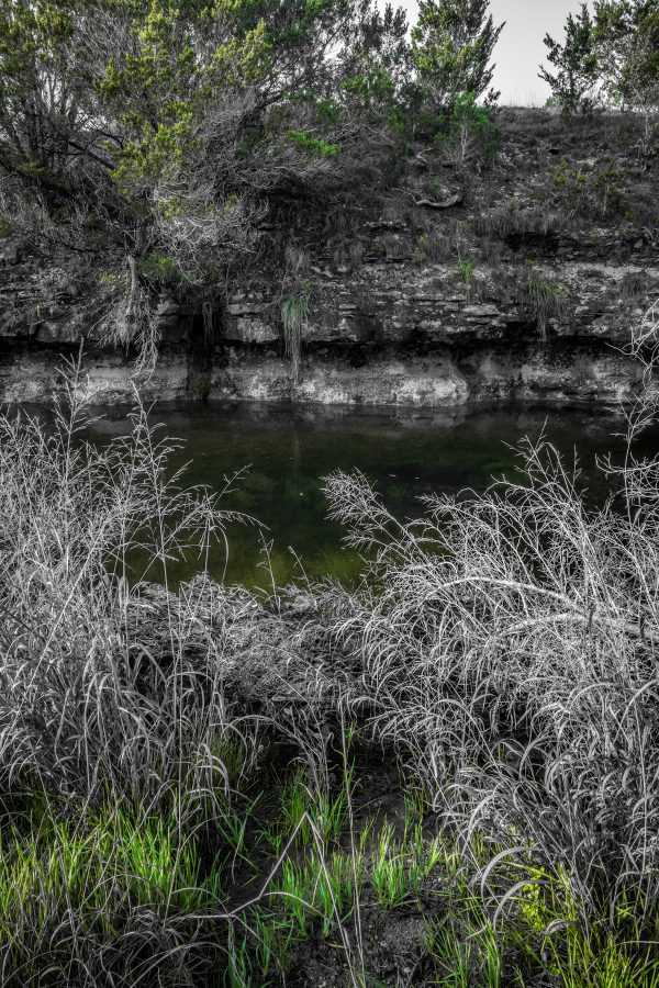 Early Morning on Smith Creek, Wimberley, Texas #19