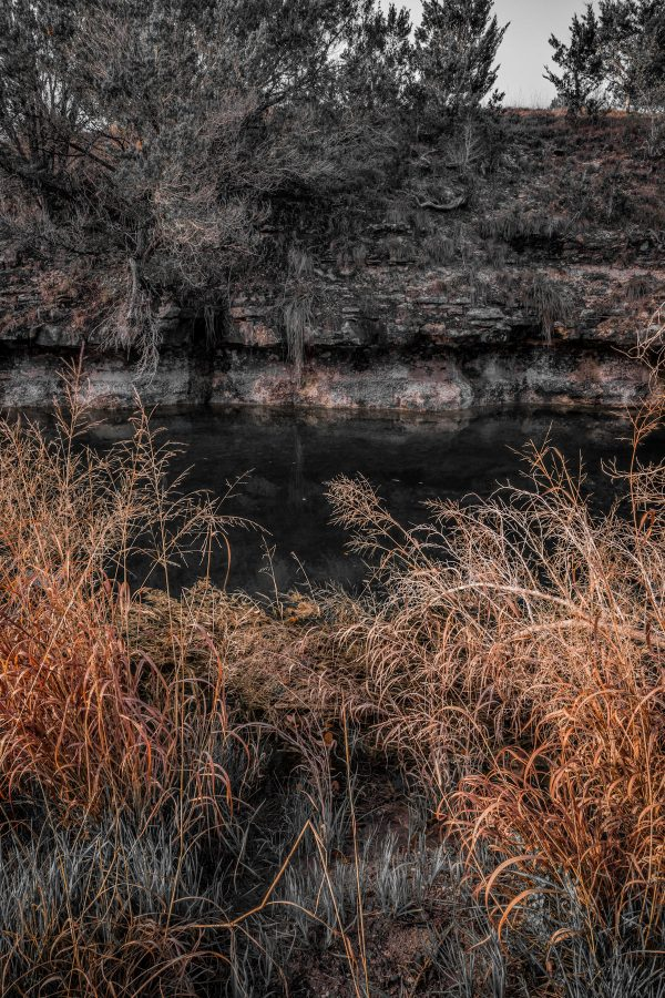 Early Morning on Smith Creek, Wimberley, Texas #20