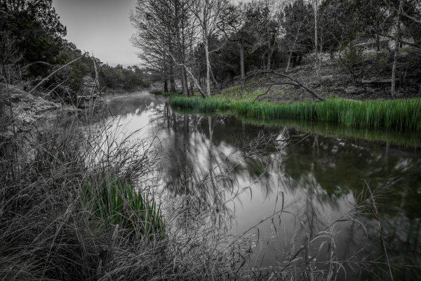 Early Morning on Smith Creek, Wimberley, Texas #4