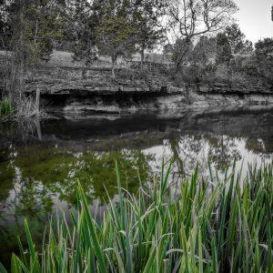 Early Morning on Smith Creek, Wimberley, Texas #6