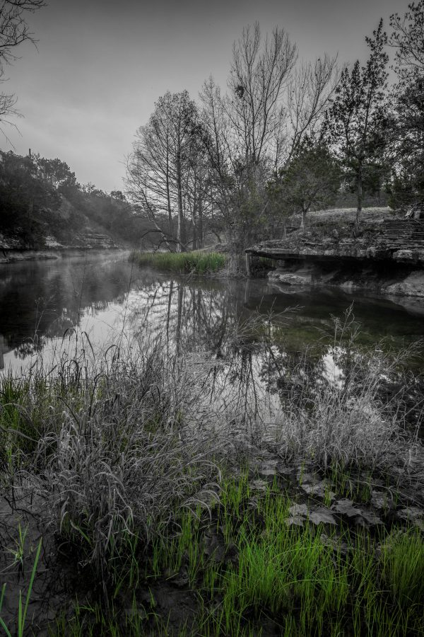 Early Morning on Smith Creek, Wimberley, Texas #8