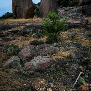 Enchanted Rock Collection- Part 1, Print #17