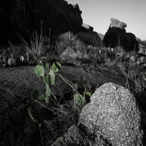 Enchanted Rock Collection- Part 1, Print #6