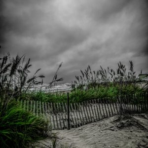 Fence on the Dunes 5, Padre Island, Texas