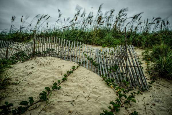 Fence on the Dunes 6, Padre Island, Texas