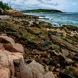 Granite Shores, Acadia National Park, Maine