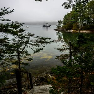 High Tide in Blue Hill Bay, Blue Hill, Maine