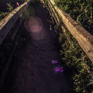 Lens Flare on the Sandy Walkway, Padre Island, Texas