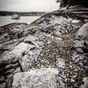 Low Tide in Blue Hill Bay 2, Maine