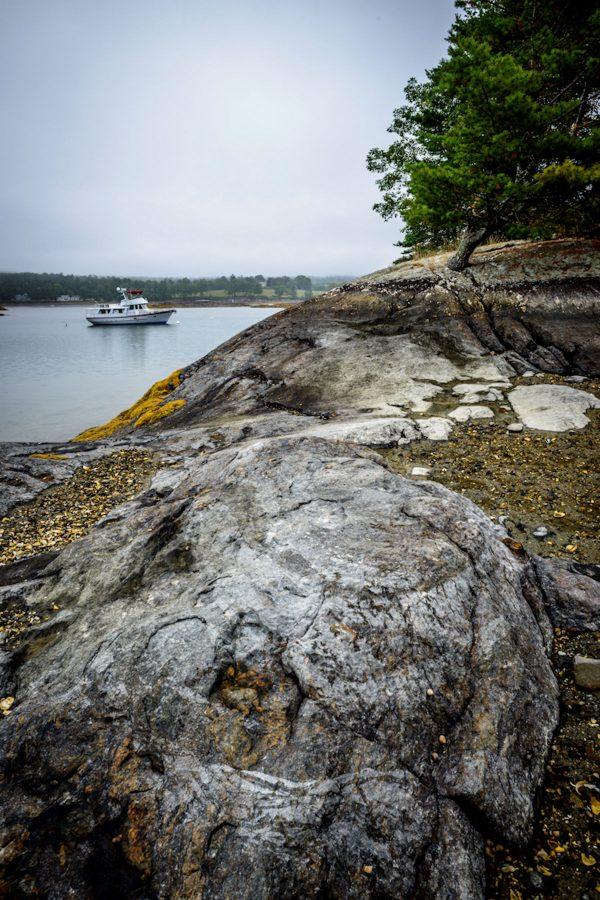 Low Tide in Blue Hill Bay #7, Maine