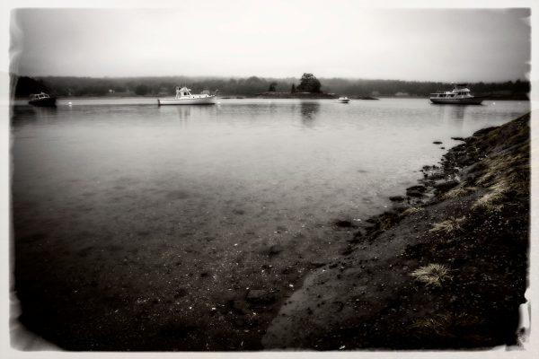 Low Tide in Blue Hill Bay, Maine