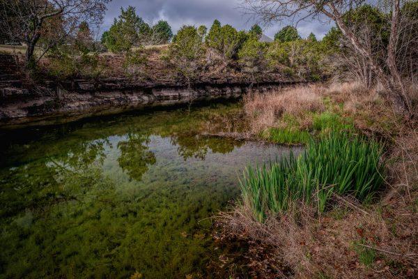 Morning on Smith Creek, Wimberley, Texas #29