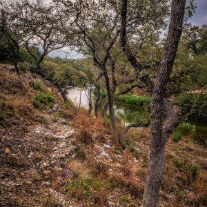Morning on Smith Creek, Wimberley, Texas