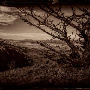 Neque Insania in Vallis
