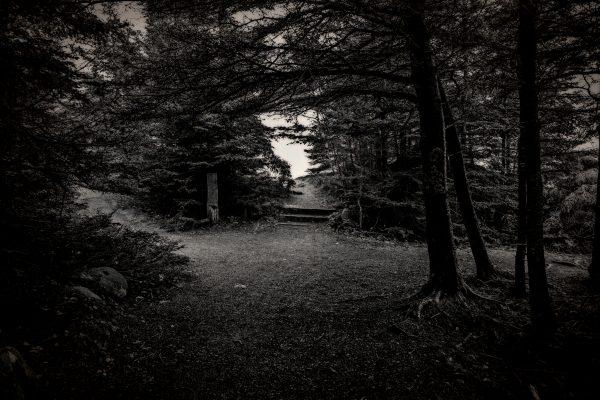 Ocean Paths, Acadia National Park, Maine