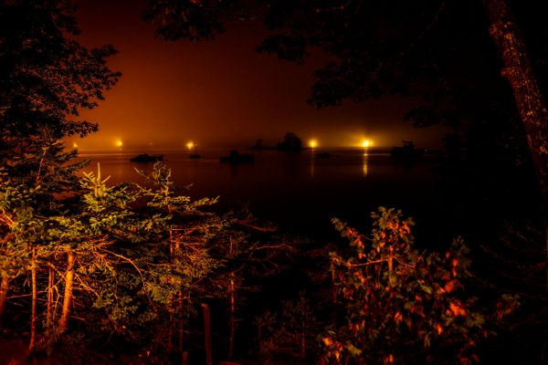 The Bay Nocturnal, Blue Hill, Maine