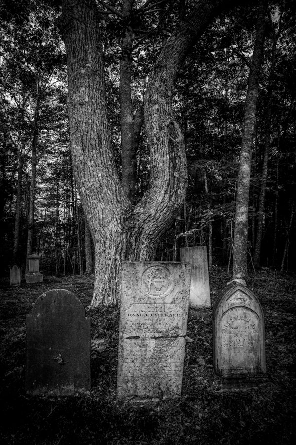 The Old Cemetery Near Blue Hill, Maine #13