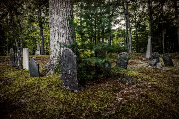 The Old Cemetery Near Blue Hill, Maine #4