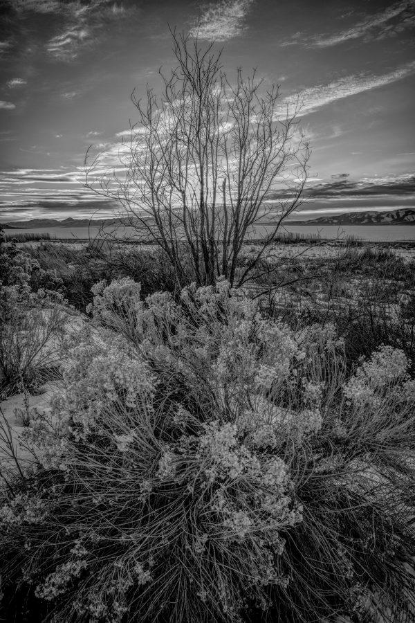 Utah Lake Sunset, Provo, Utah (bw)