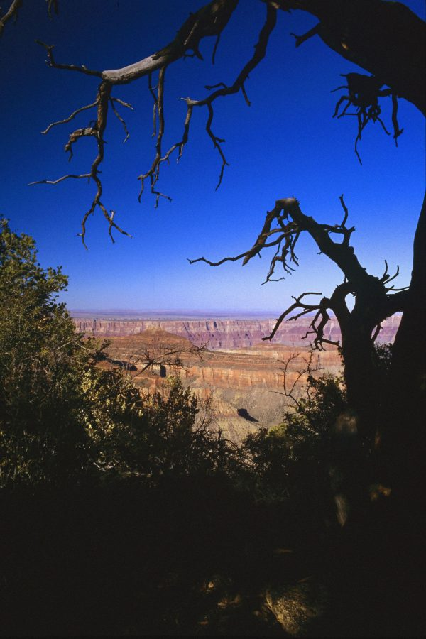 View From the North Rim, Grand Canyon, Arizona