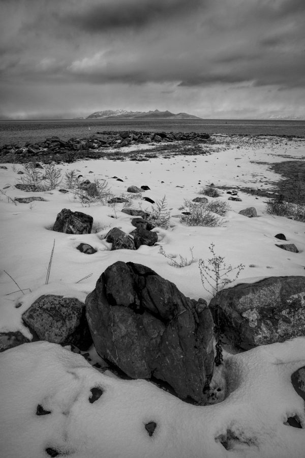 Winter Shore 2 in Grayscale, Great Salt Lake, Utah