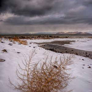 Winter Shore, Great Salt Lake, Utah