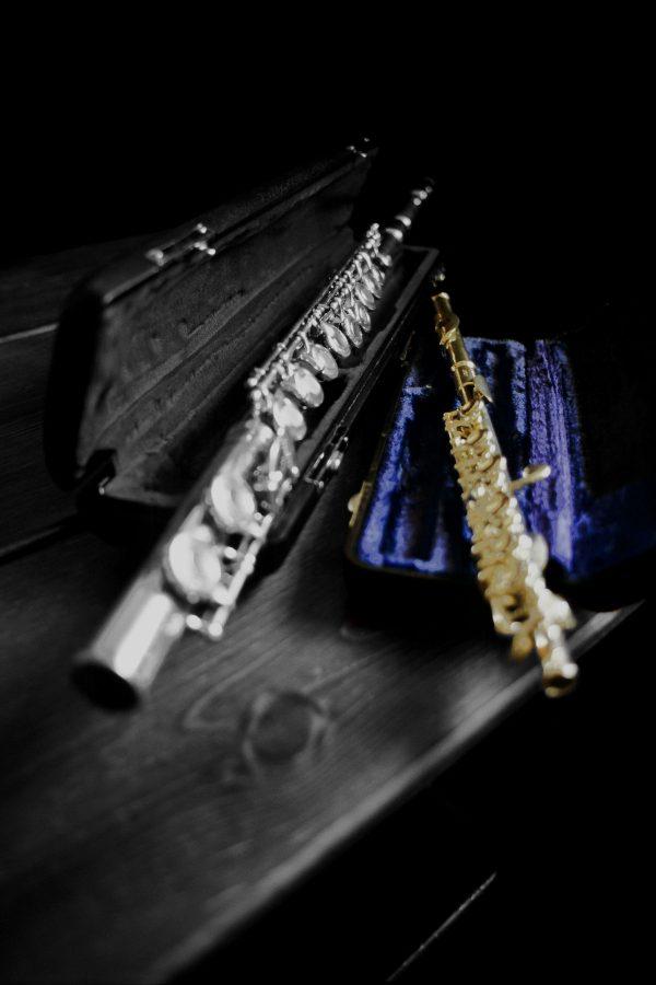 Flute and Piccolo, Select Color Blue