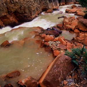 Rock Falls, Canyon Creek, Colorado